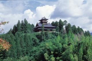 綾城の写真