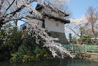 高崎城址の写真