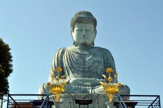 能福寺(兵庫大仏)の写真