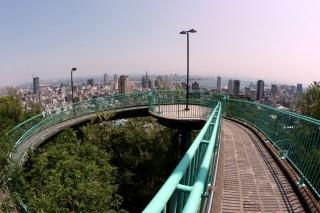 ビーナスブリッジの写真