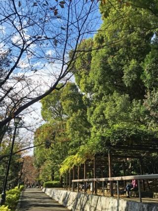 江戸川公園の写真