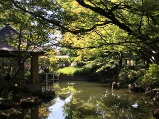 馬橋公園の写真