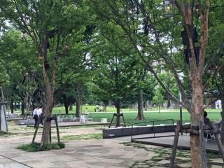 中野四季の森公園の写真