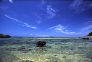 西表島の写真