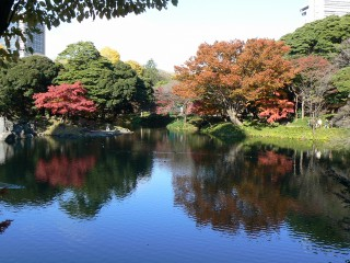 小石川後楽園の写真