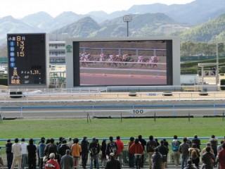 小倉競馬場の写真