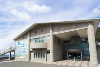 福井県海浜自然センター(若狭三方マリンパーク)の写真