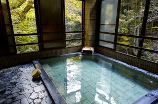 蛇の湯温泉 たから荘の写真