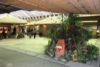 琉球村の写真