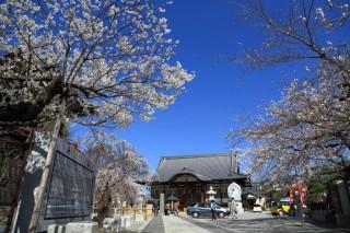 宝寿院の写真