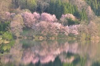 中綱湖の写真