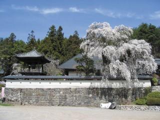 福王寺の写真