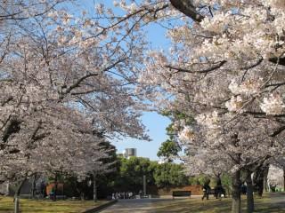 長崎原爆落下中心地(平和公園)の写真