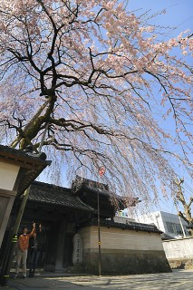 慶恩寺の写真