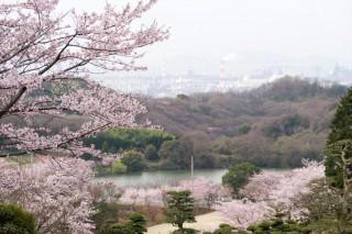 種松山公園西園地の写真