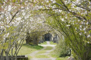 刀尾神社の写真