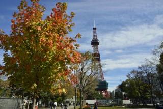 札幌大通公園(札幌テレビ塔)の写真
