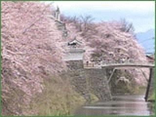 霞城公園の写真