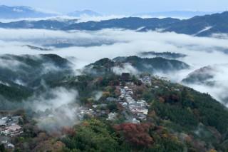 吉野山の写真