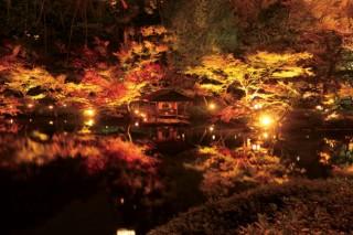 八芳園の写真