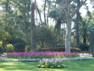宮交ボタニックガーデン青島(青島亜熱帯植物園)の写真