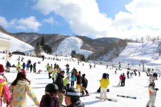 奥伊吹スキー場の写真
