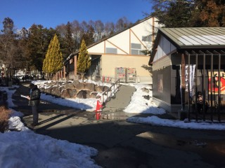八ヶ岳リゾートアウトレットの写真