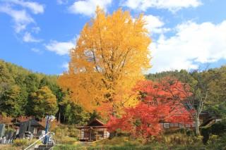 長福寺の写真