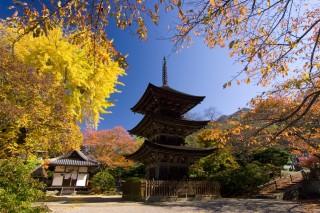 前山寺の写真