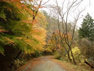東方山安養寺(滋賀)の写真