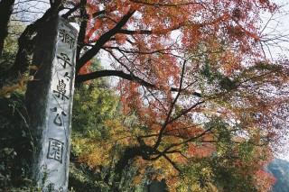 獅子ヶ鼻公園の写真