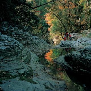 龍頭泉の写真
