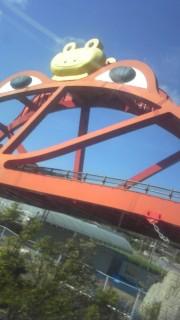 かえる橋の写真