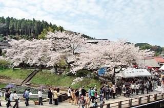 陶郷中尾山の写真