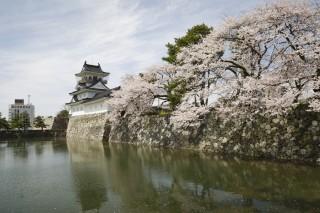 富山城址公園の写真