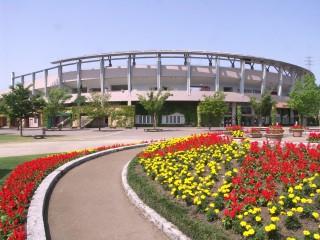 宮崎市生目の杜運動公園野球場の写真