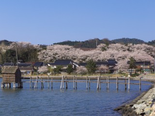 東郷湖の写真
