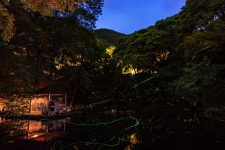 大川竹ヶ沢公園の写真