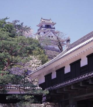 高知城の写真
