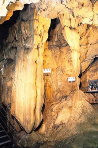 龍河洞の写真