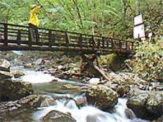 あだたら渓谷 奥岳自然遊歩道の写真