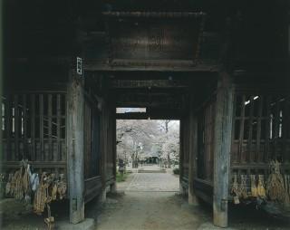 陸奥国分寺薬師堂の写真