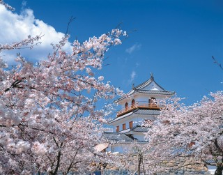 白石城跡(益岡公園)の写真