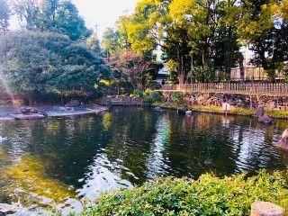 戸越公園の写真