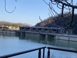 県立津久井湖城山公園の写真