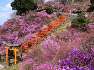 獅子崎稲荷神社の写真