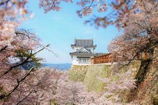 津山城跡の写真