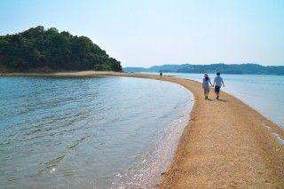 黒島ヴィーナスロードの写真
