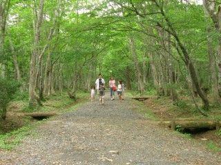 岡山県立森林公園の写真
