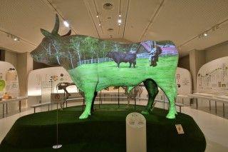 但馬牛博物館の写真